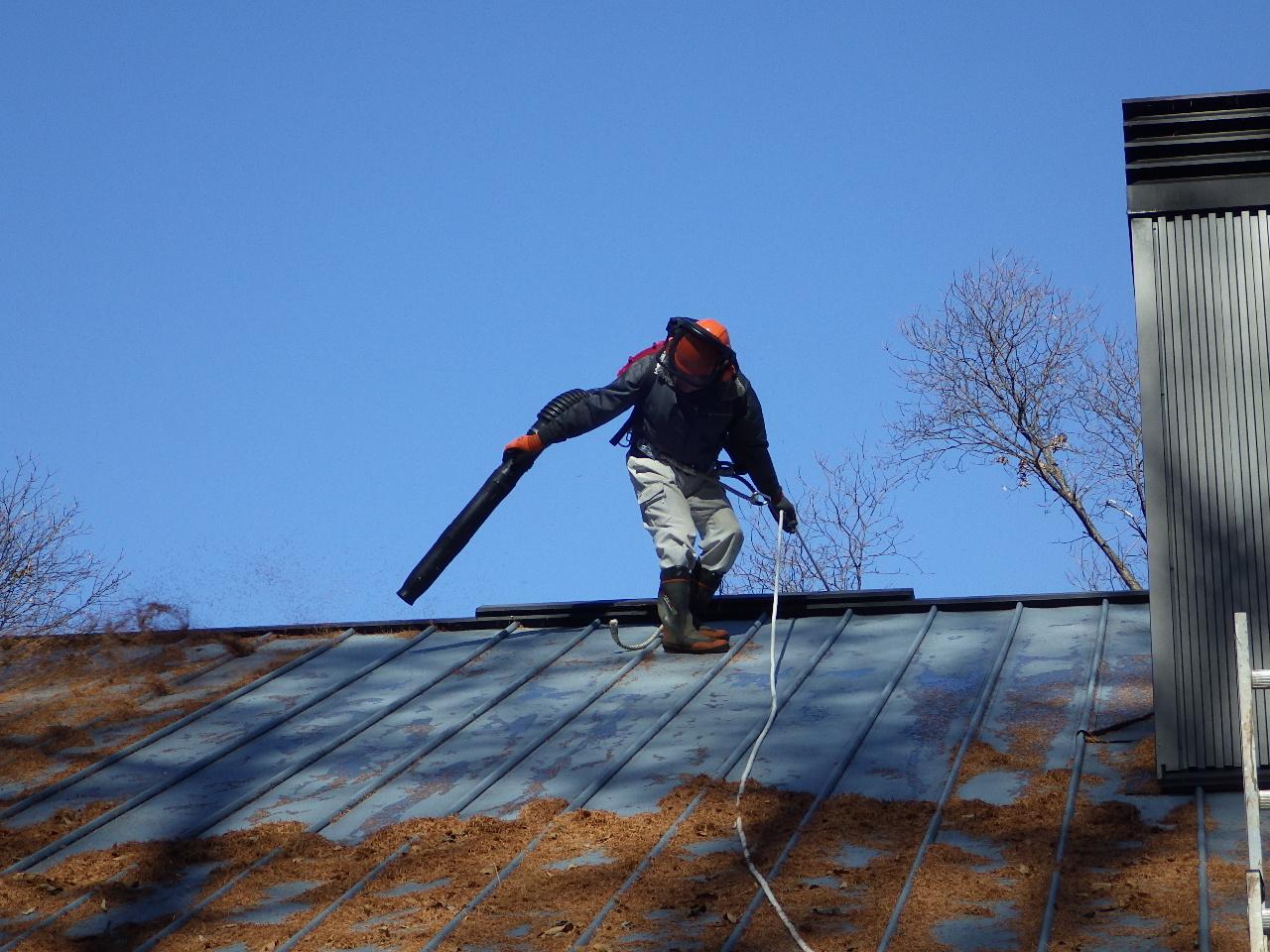 ブロアーで屋根掃除