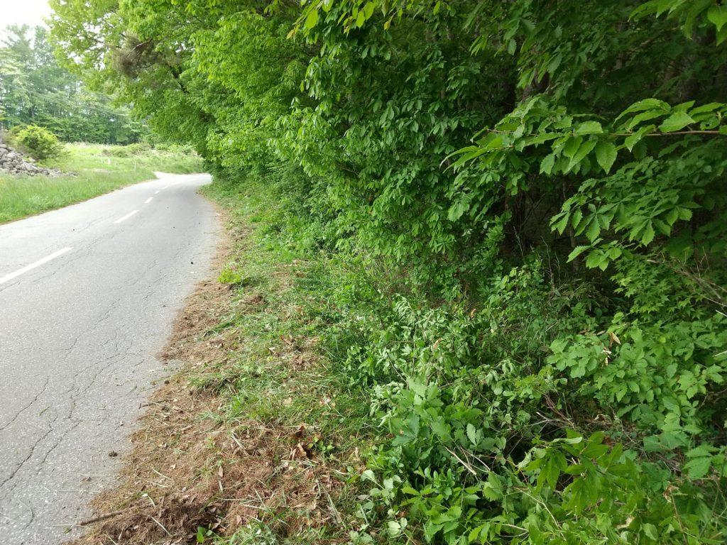 通学路の草刈り作業後