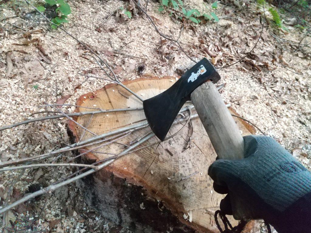 枝を斧で切る