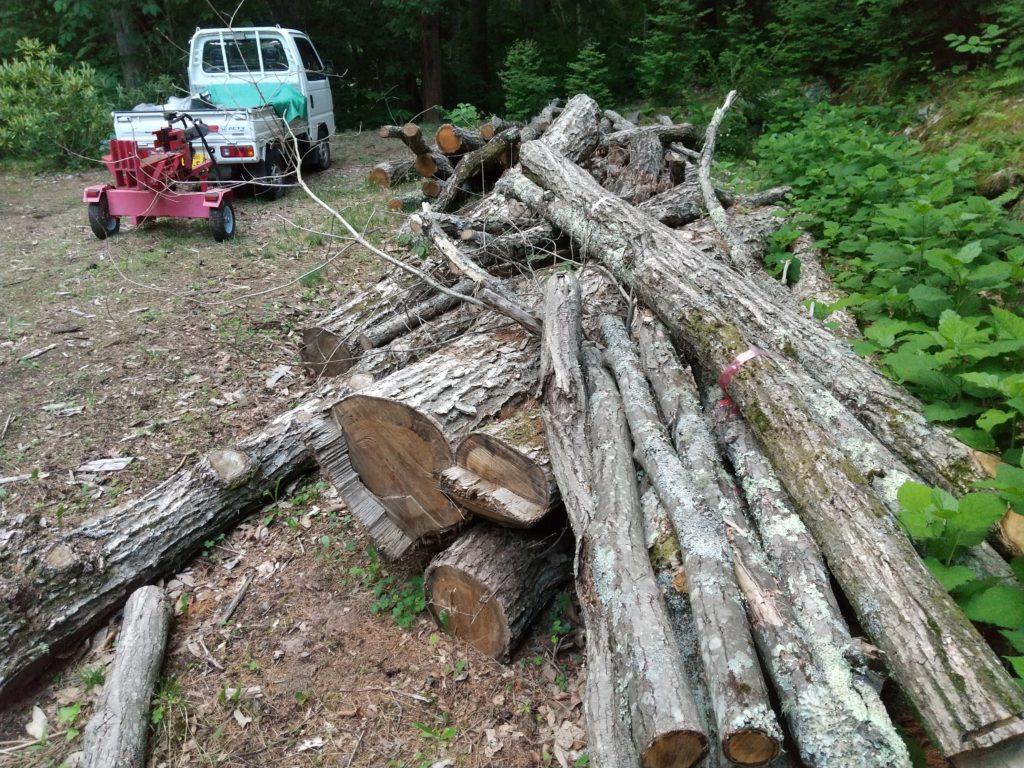 大量の原木