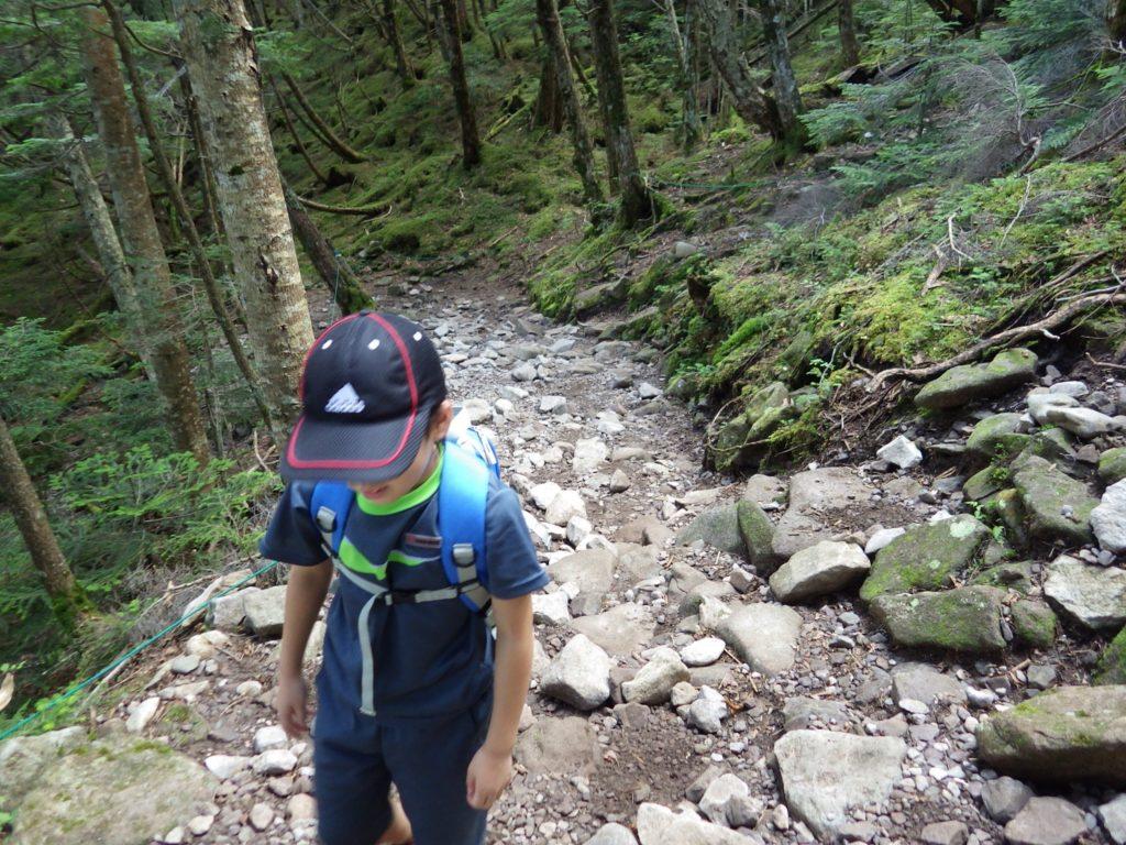 蓼科山の登山道