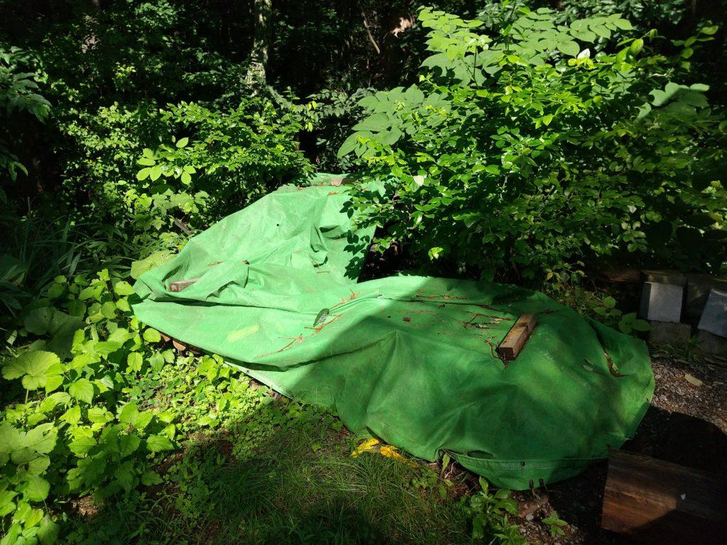 シートをかけてある原木