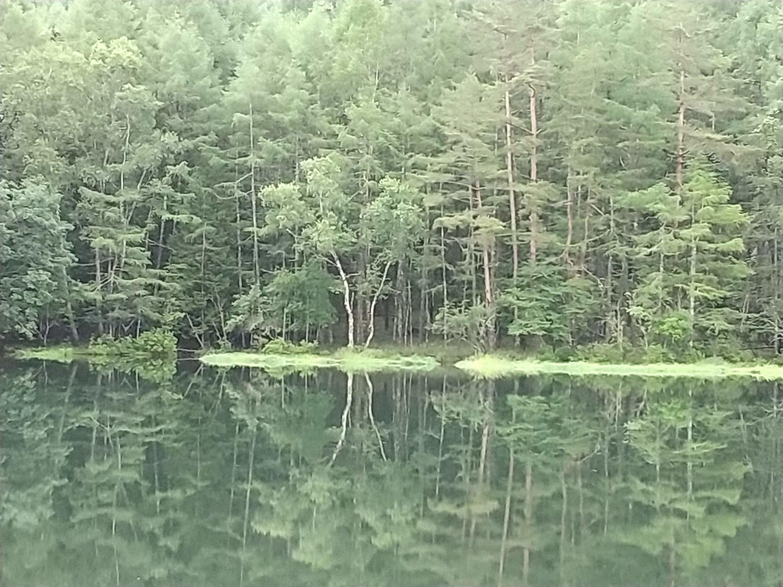 初夏の御射鹿池