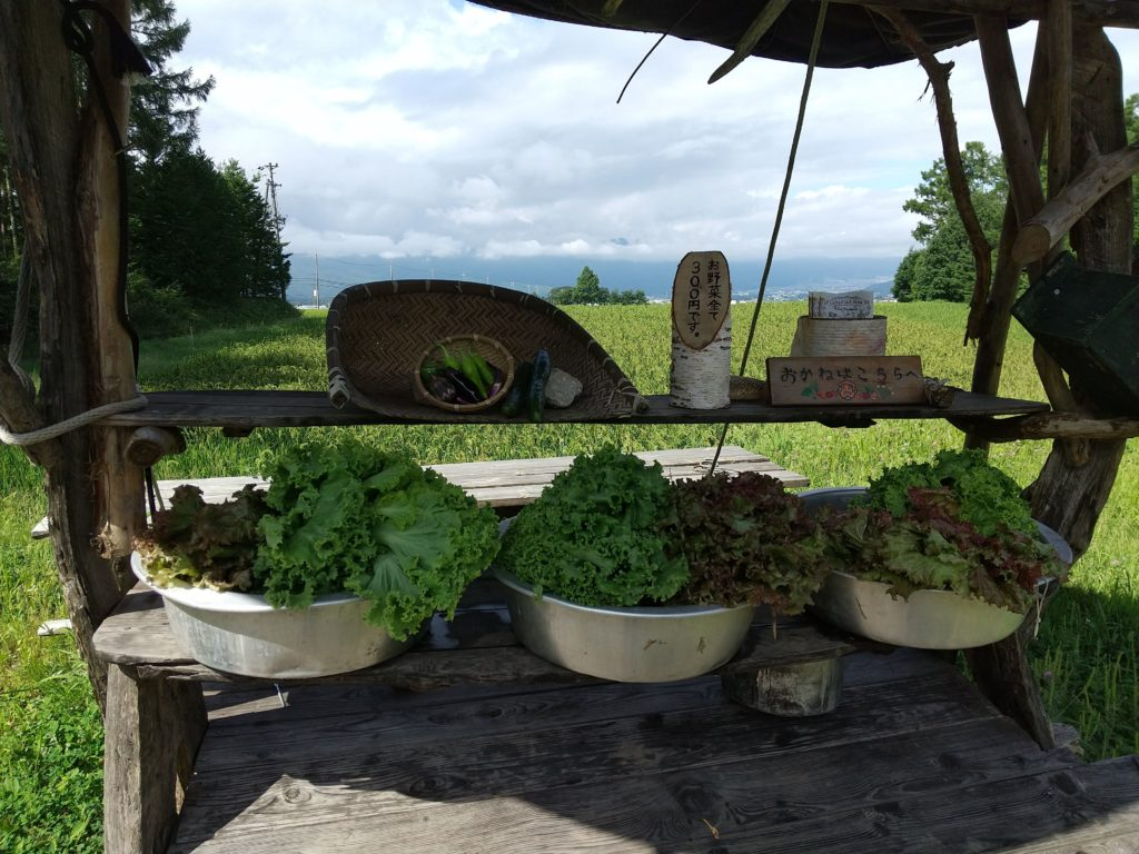 カナディアンファームの有機野菜販売所