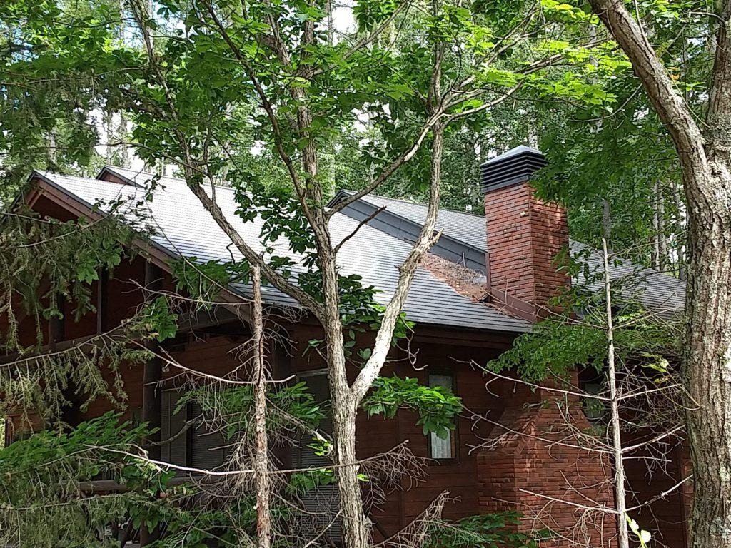 トタン屋根でも落ち葉はたまる