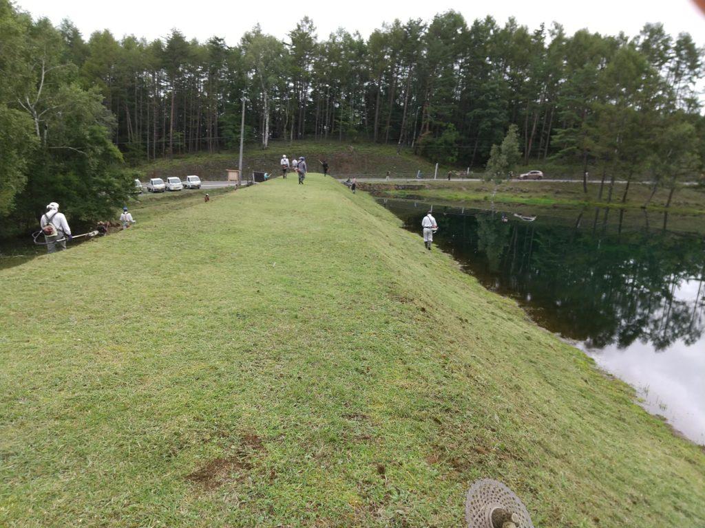 御射鹿池の草刈り