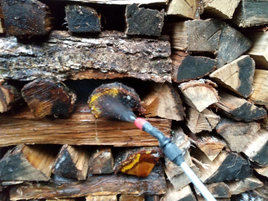 カビた薪に散布