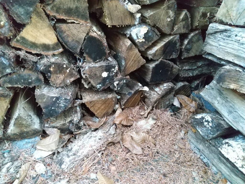 地面に直接積んだ薪