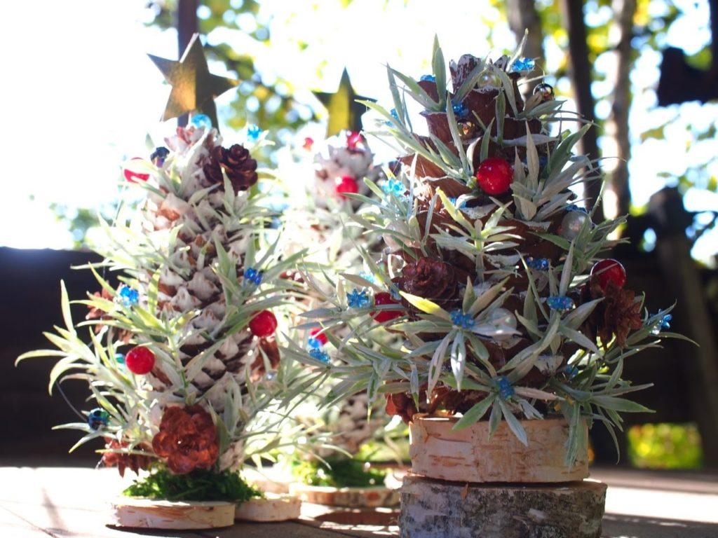 チョウセンゴヨウのツリー