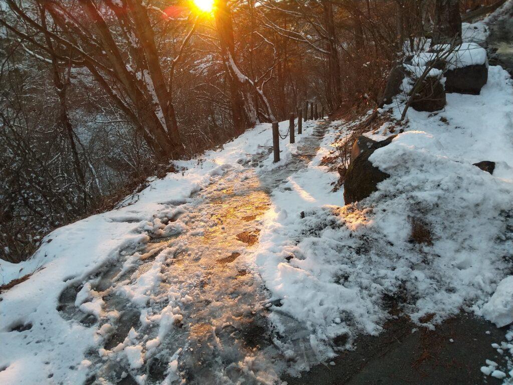 夕日の歩道