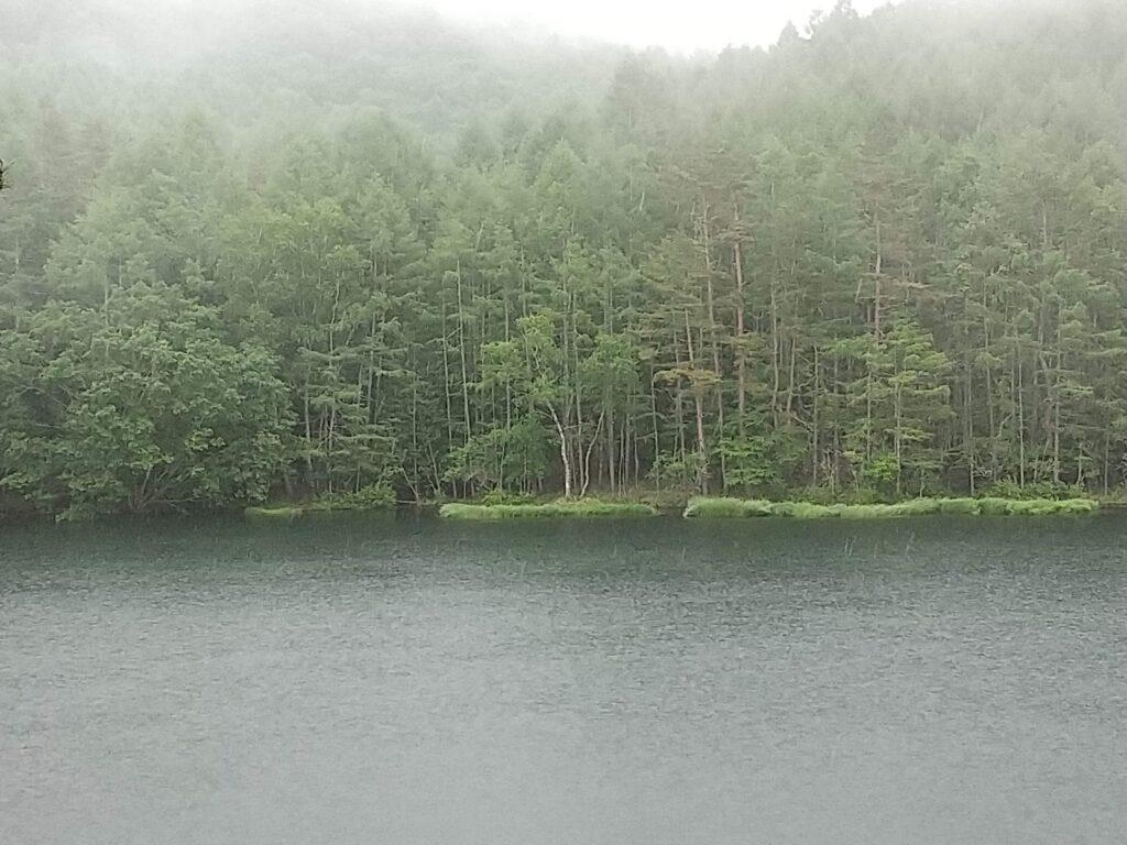 梅雨の御射鹿池
