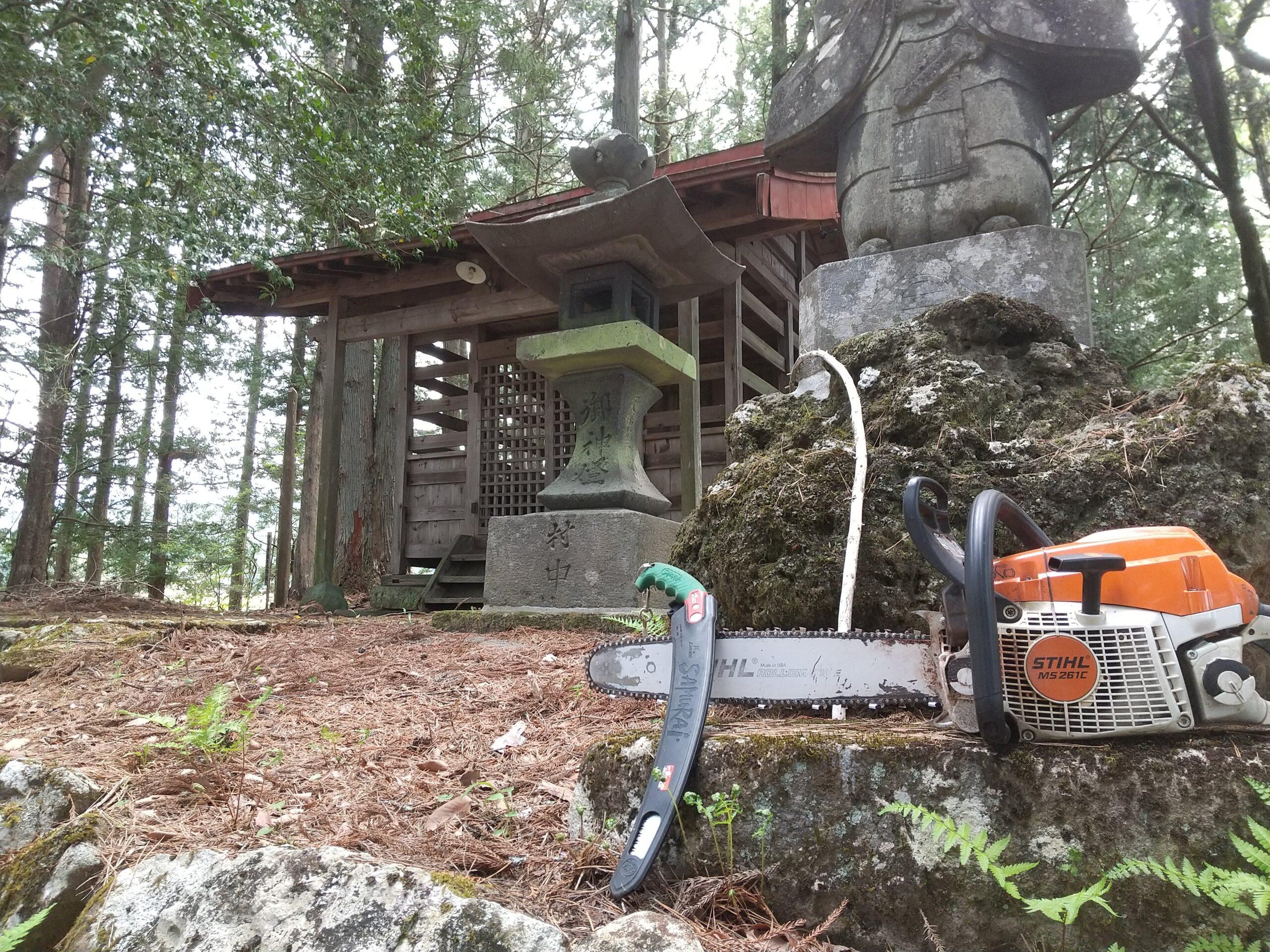 神社の伐採