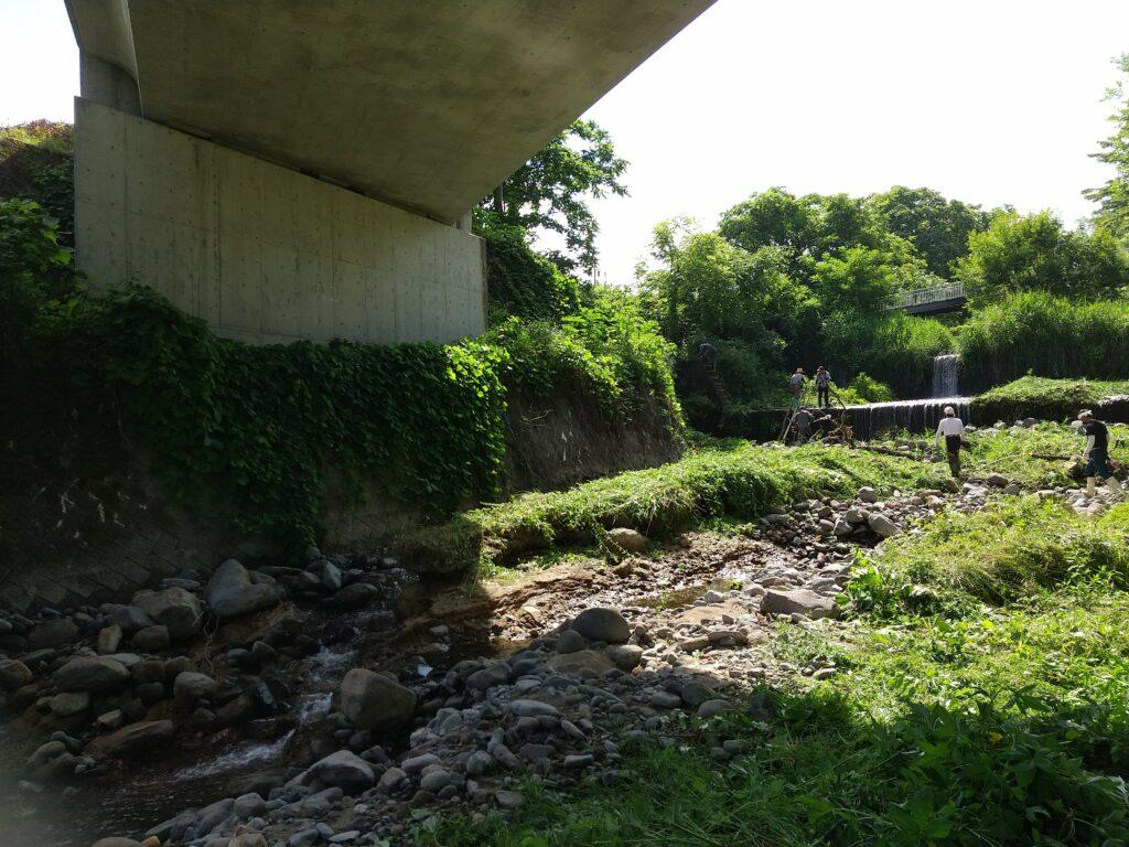 ようやく見えてきた川