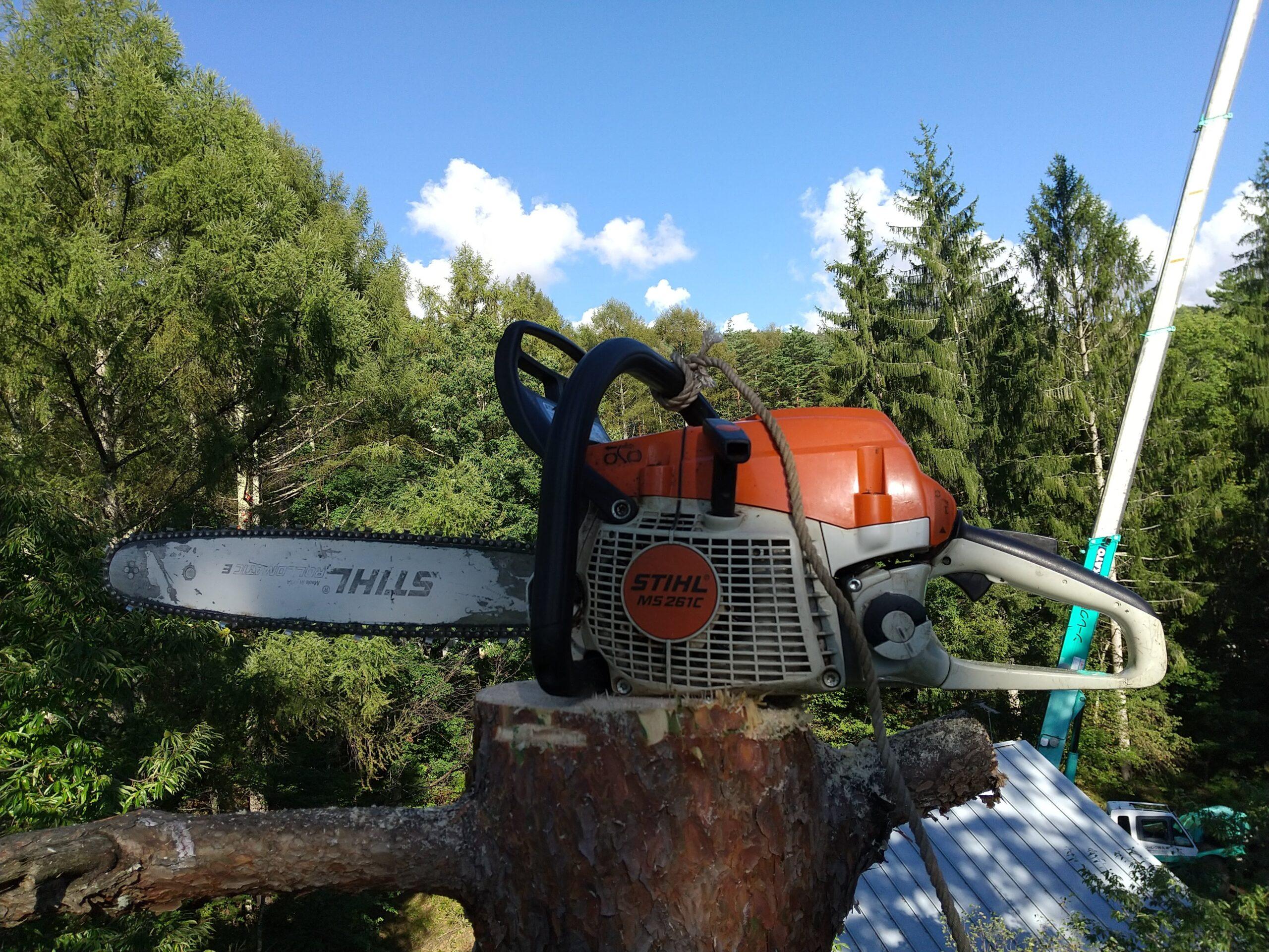 スチールMS261CMで特殊伐採
